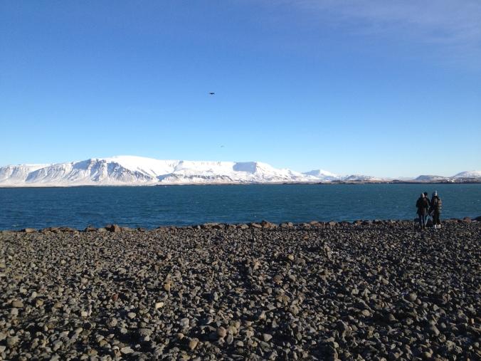 MARK ICELAND FEB 2015 2622
